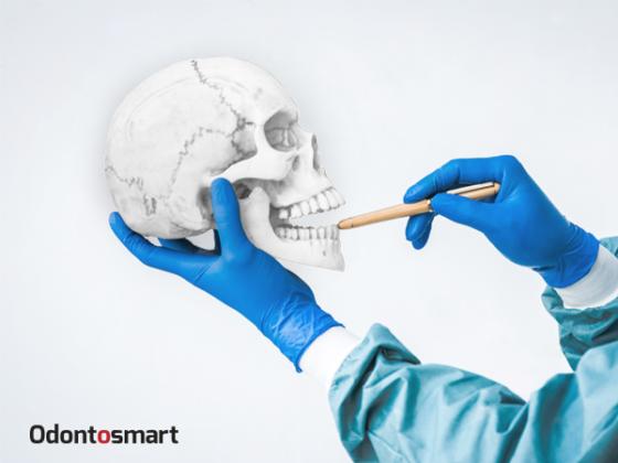 Odontología Forense como especialización odontológica